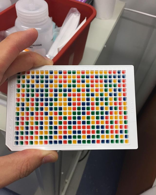 Building plates with different drugs