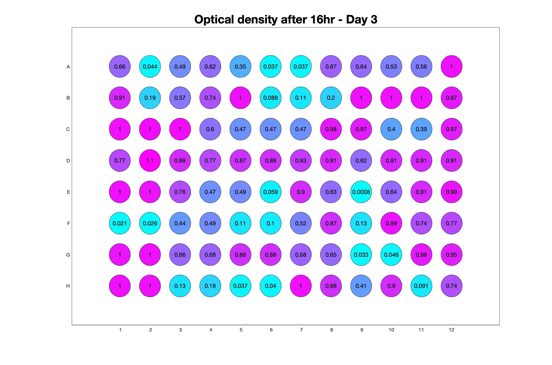 Optical density after 16hr - Day 3.jpg