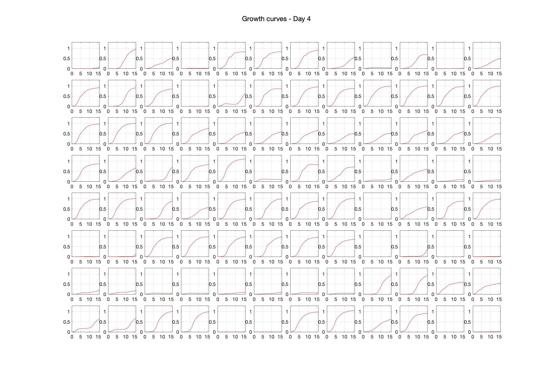 Optical density (16hr) - Day 4.jpg