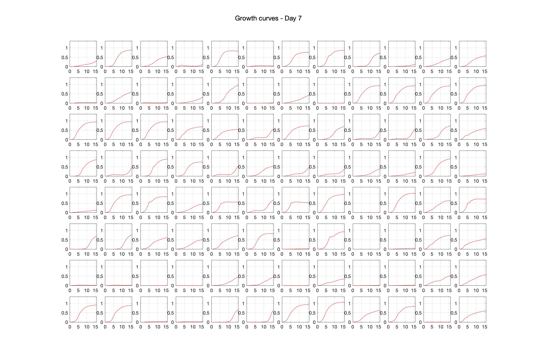 Optical density (16hr) - Day 7.jpg