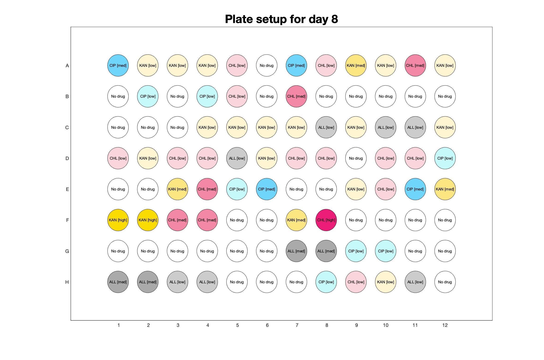 Plate setup for day - 8.jpg