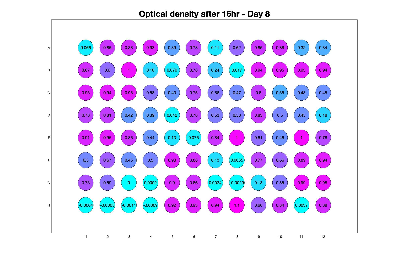 Optical density after 16hr - Day 8.jpg