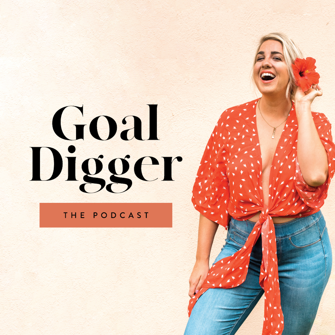 Goal Digger PodcastHosted by Jenna Kutcher - Jenna is honestly my fav! She's got such great energy and she shares some serious GOLD when it comes to online marketing, Pinterest, Instagram, email lists. She also hosts interviews with really inspiring business owners.