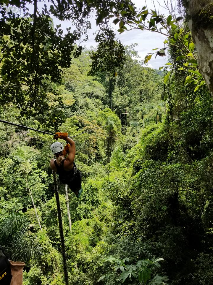 Zip-lining, anyone?