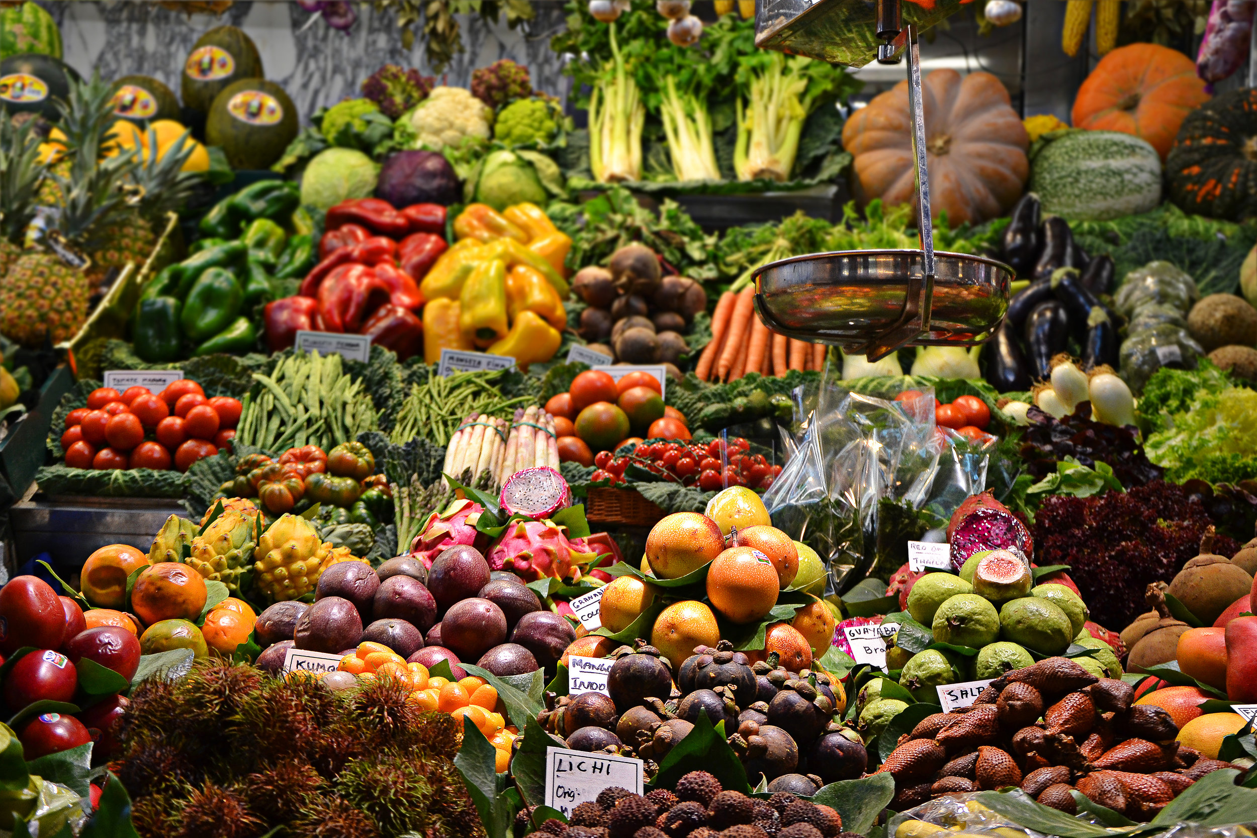 Choosing the right foods is the most important part of any diet plan