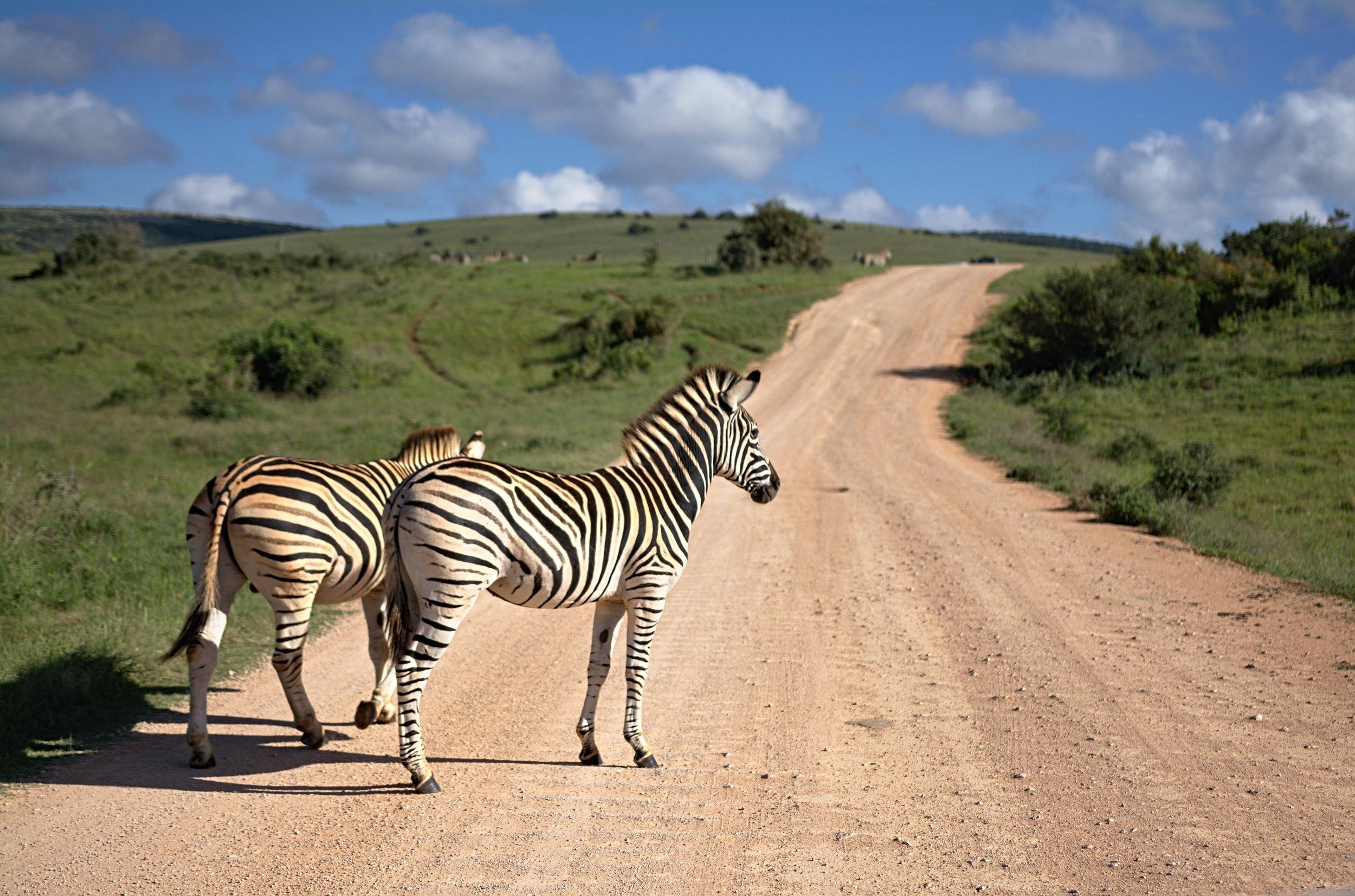 Photo: Detour Africa