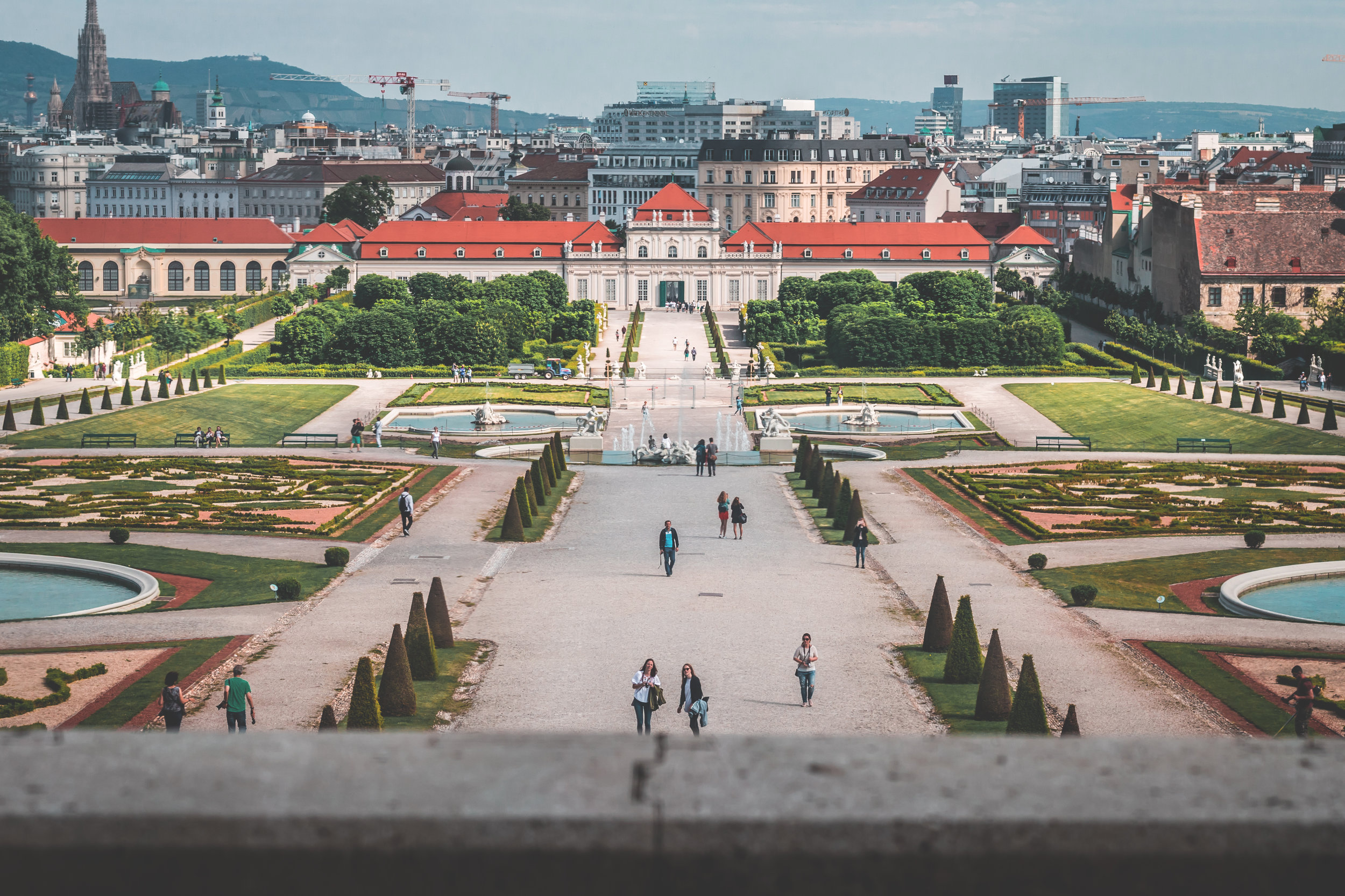palace vienna voyedge rx