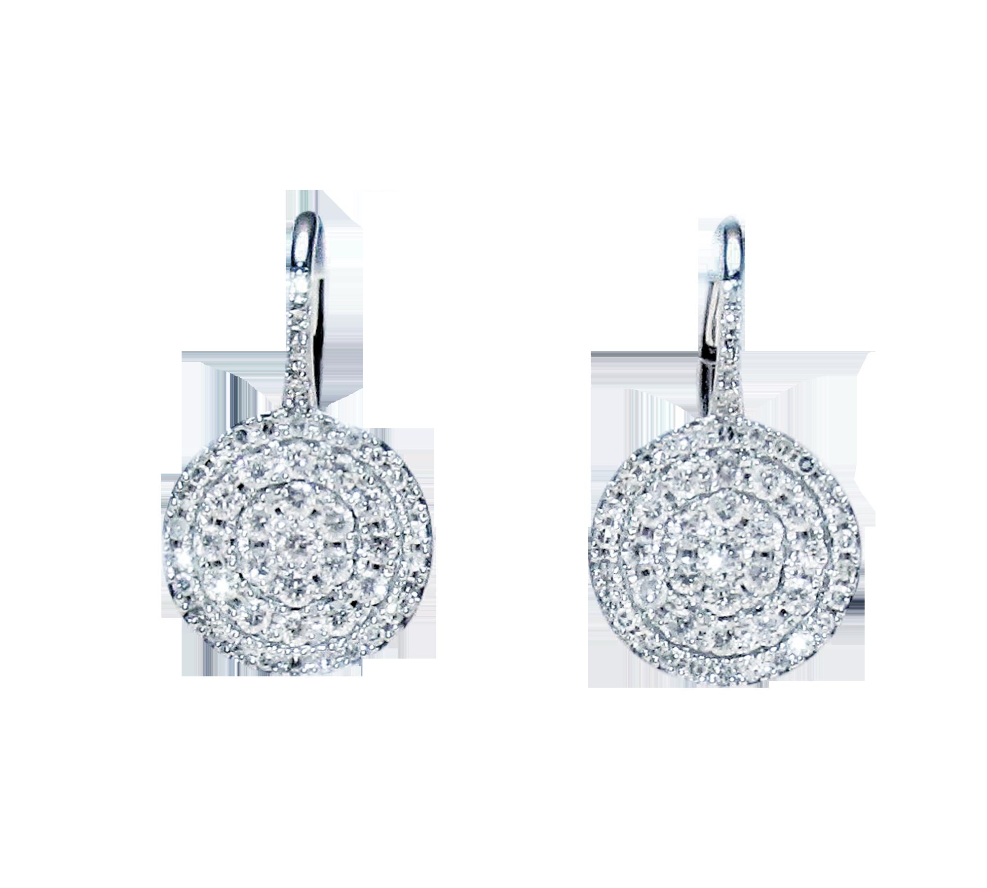 cara's-earrings.png