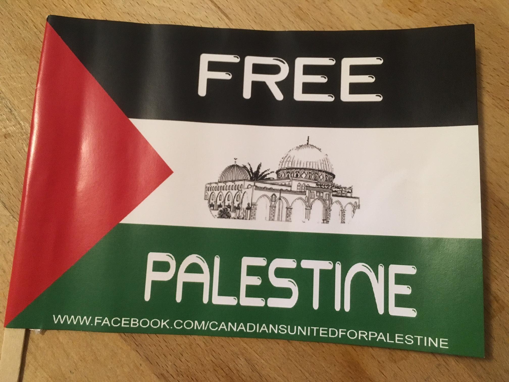 Free Palestine Flag.JPG