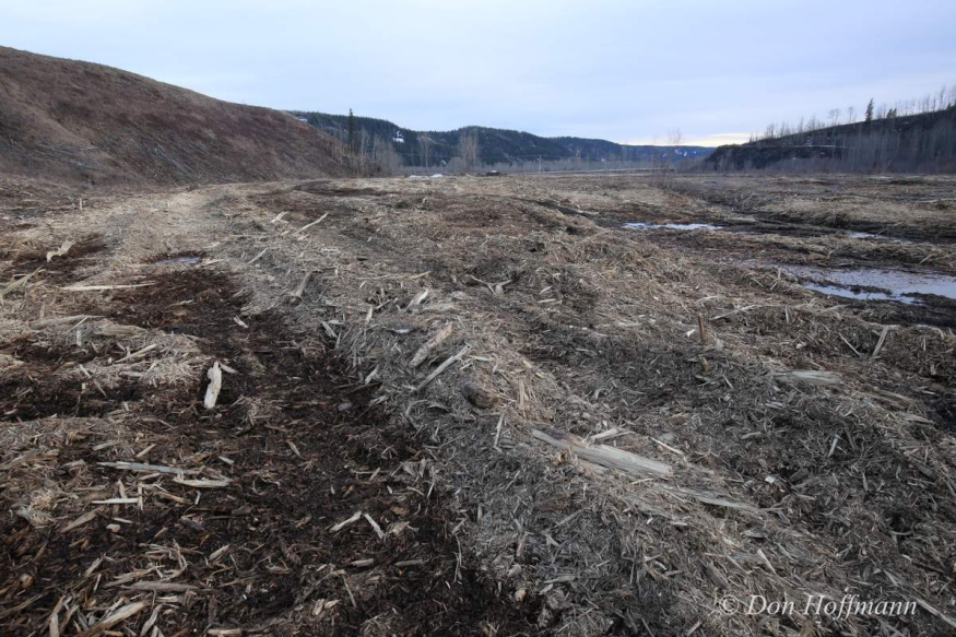Fight site C - photo4.png