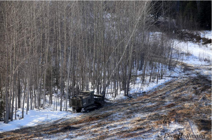 Fight site C - photo.png