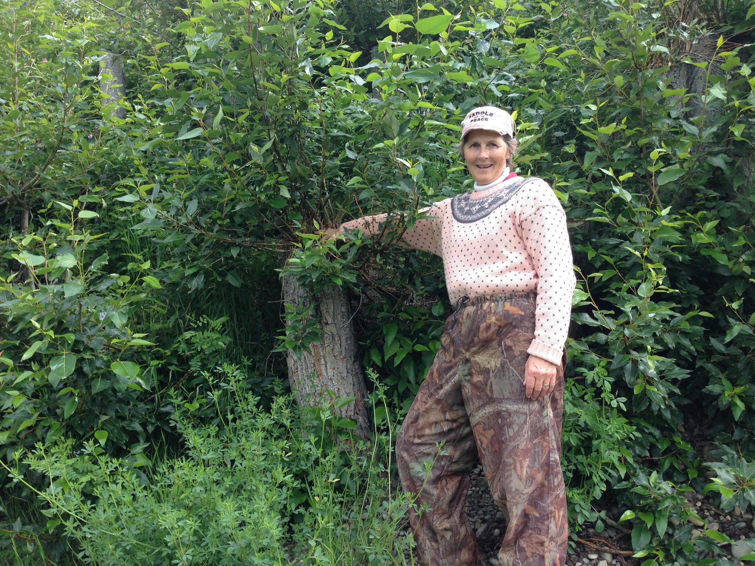 Peace River - Rita Wong - 4.jpg