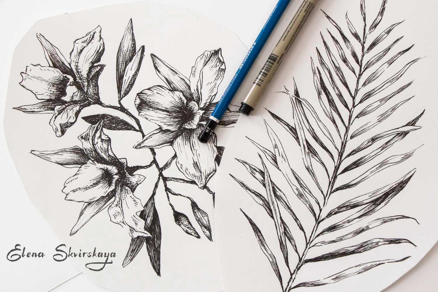 ink pen drawing, palm leaf, tropical flowers