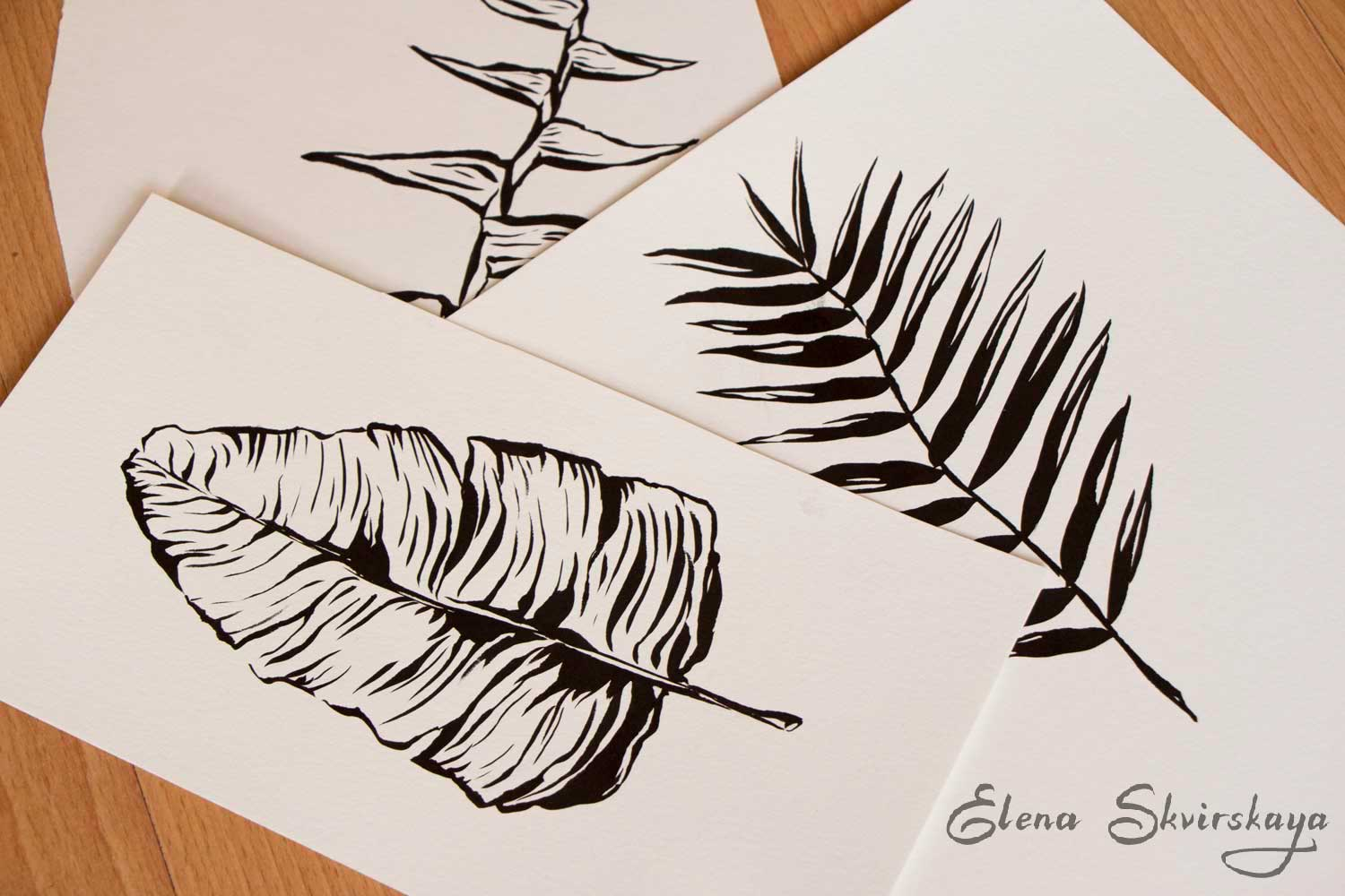 tropical palm leaves, ink on paper