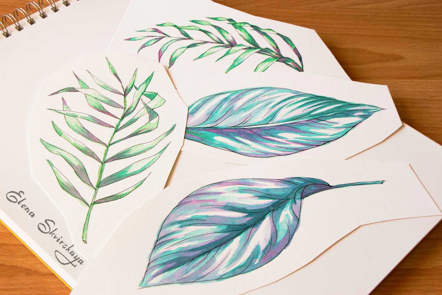 palm leaves, tropical leaves, watercolor on paper, sketches for a surface print design