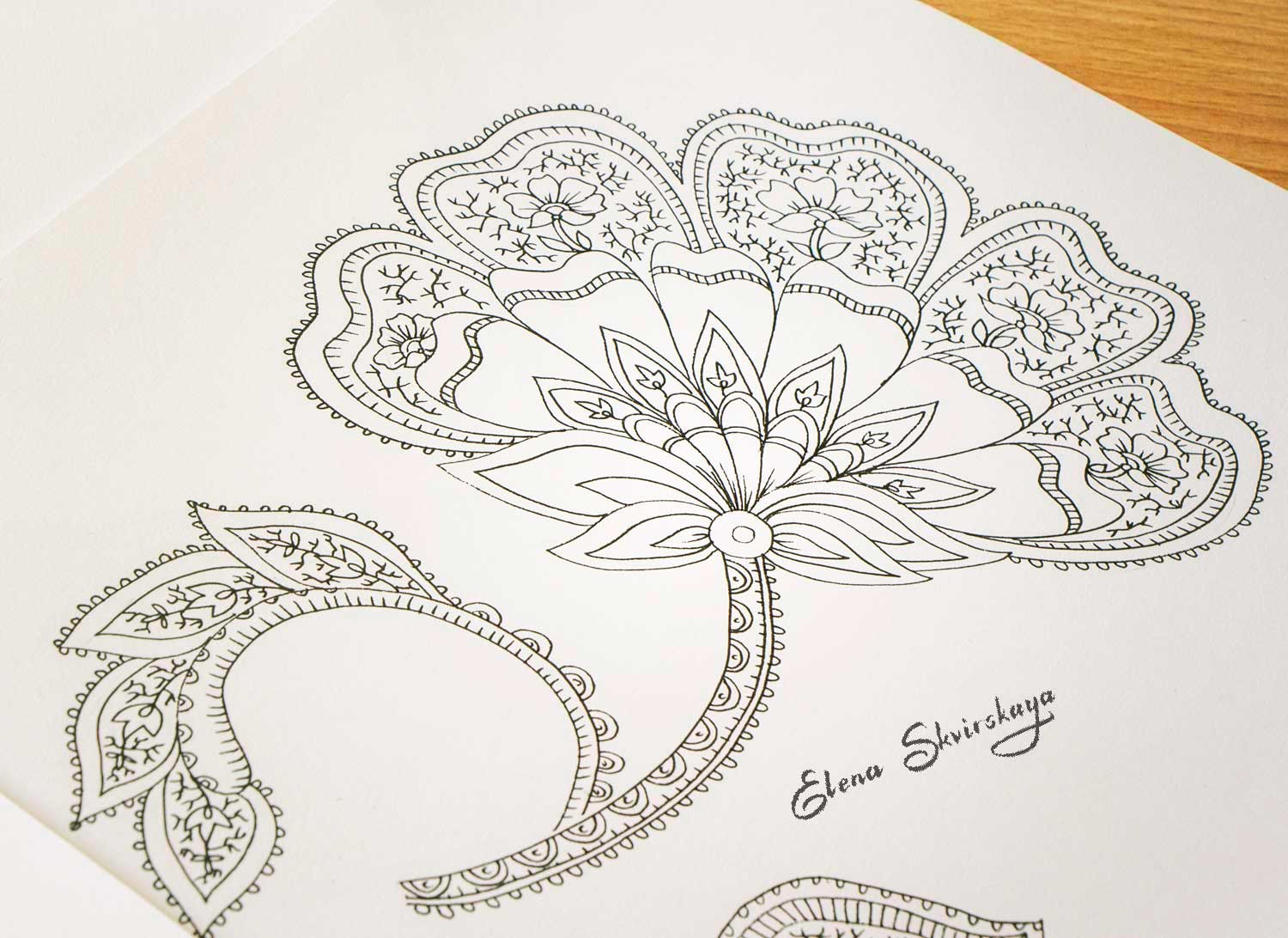 sketch of a stylized flower for a paisley design