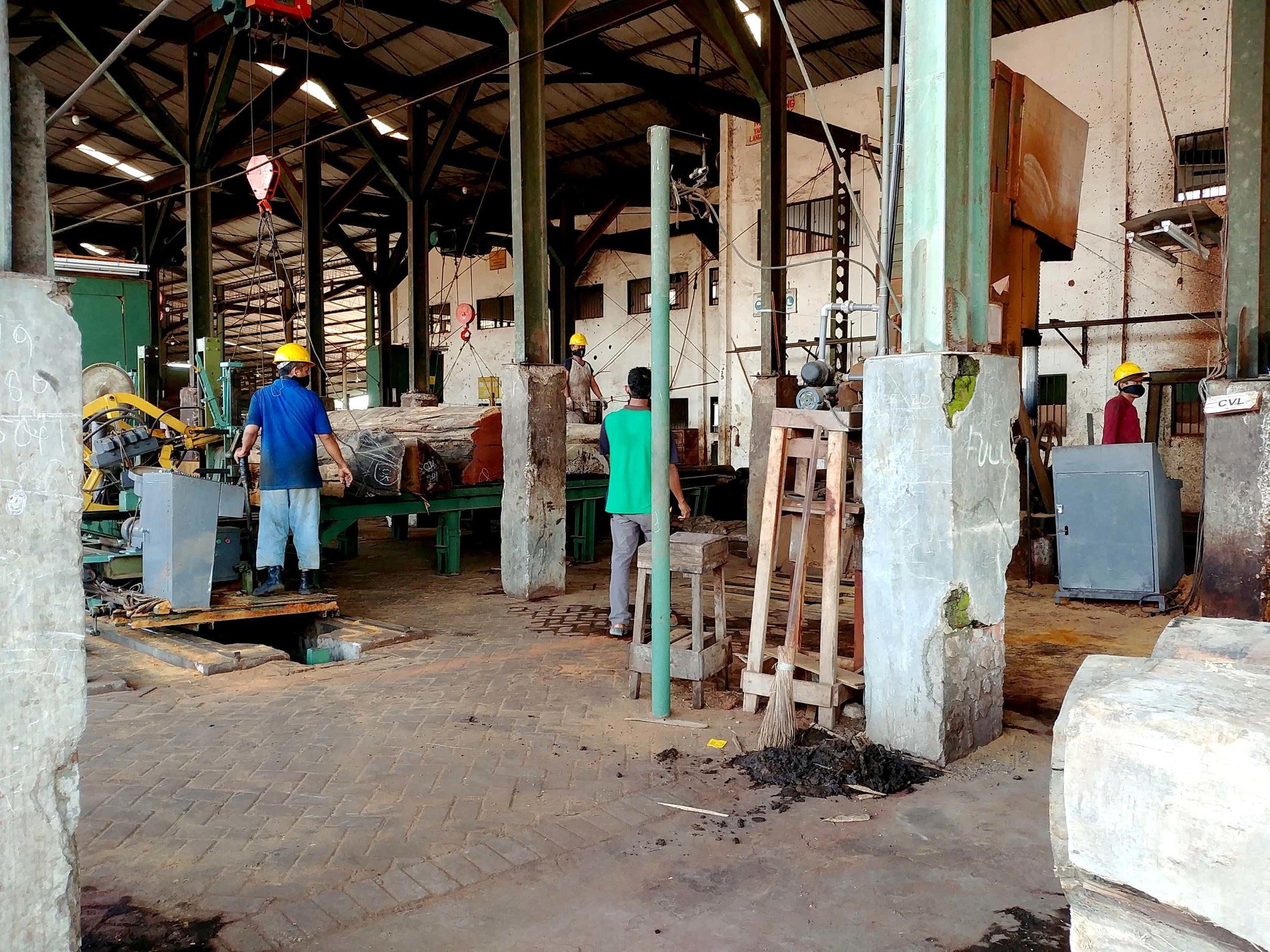 Cutting logs at sawmill