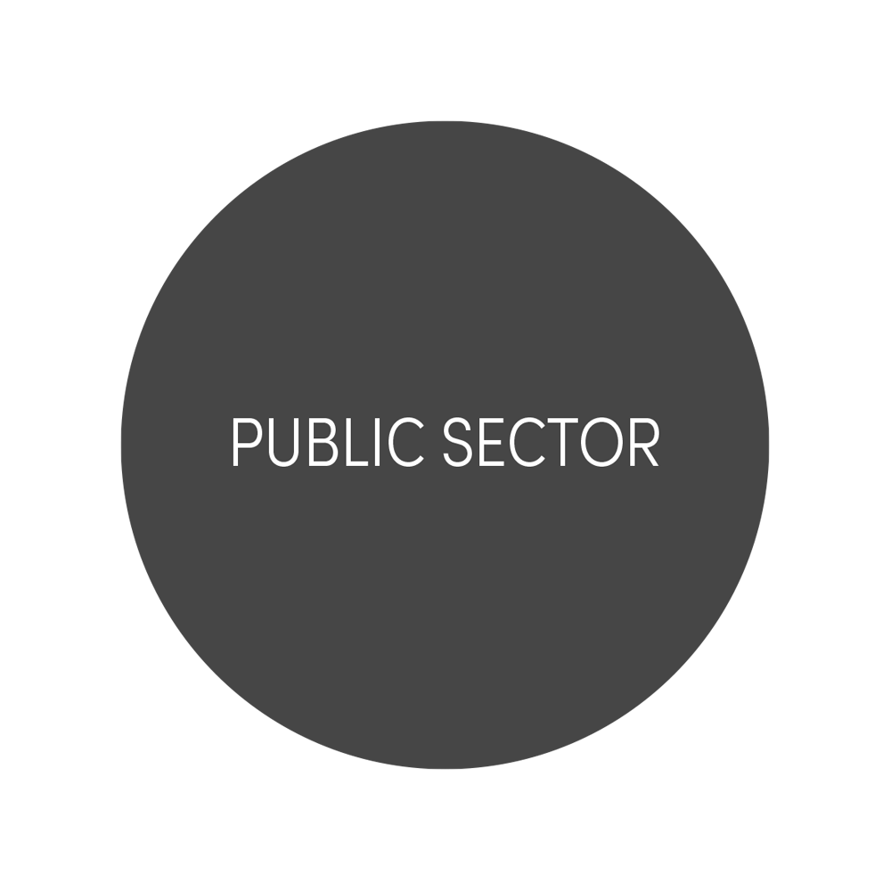 PUBLIC SECTOR (85).png