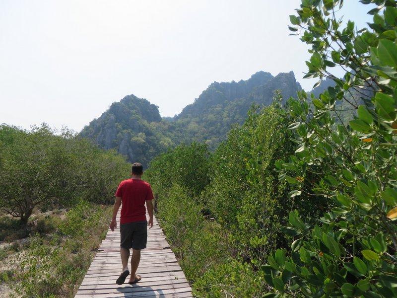 The rickety boardwalk through the mangroves at Sam Roi Yat