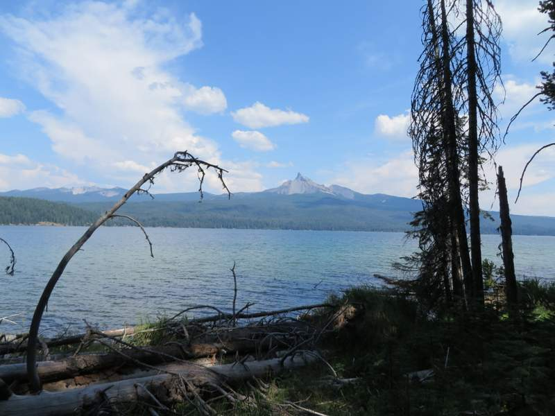 View from the bike trail at Diamond Lake
