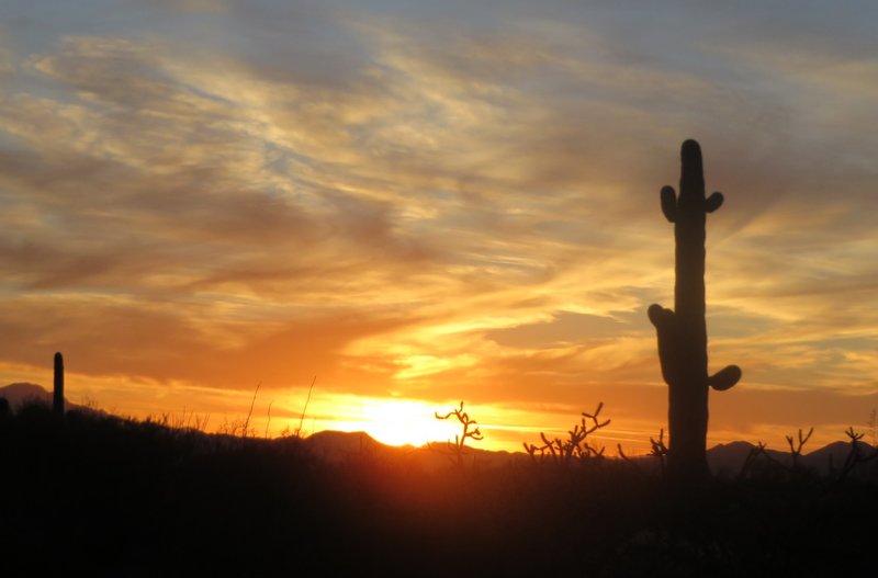 Stunning Arizona Sunsets at Gilbert Ray