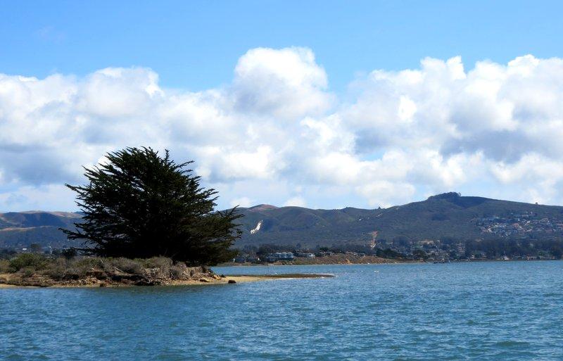 Morro Bay: A kayaker paradise