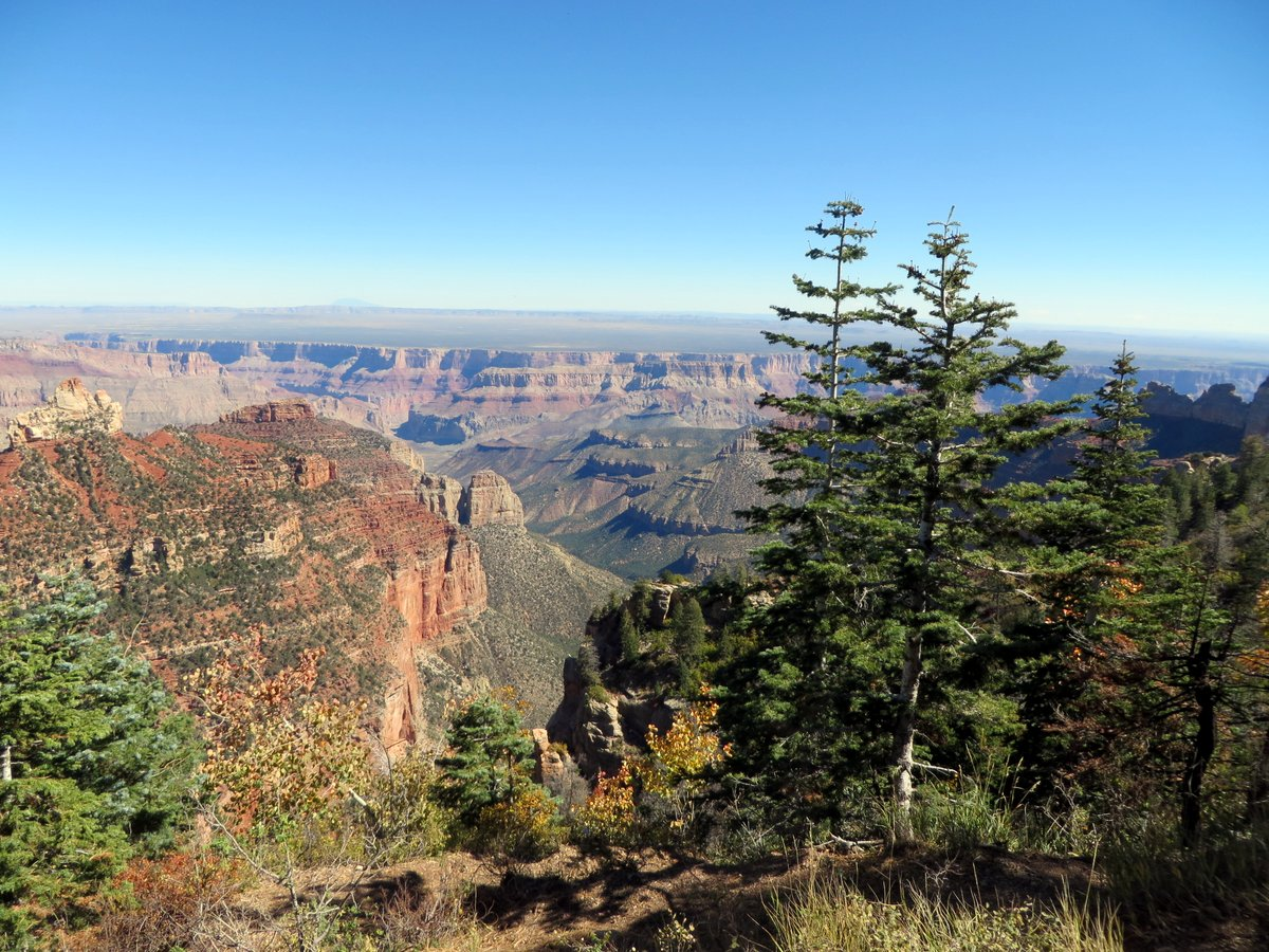 Views over the Grand Canyon from North Rim