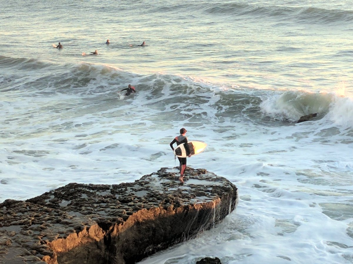 Fearless surfers braving the waves and cold water