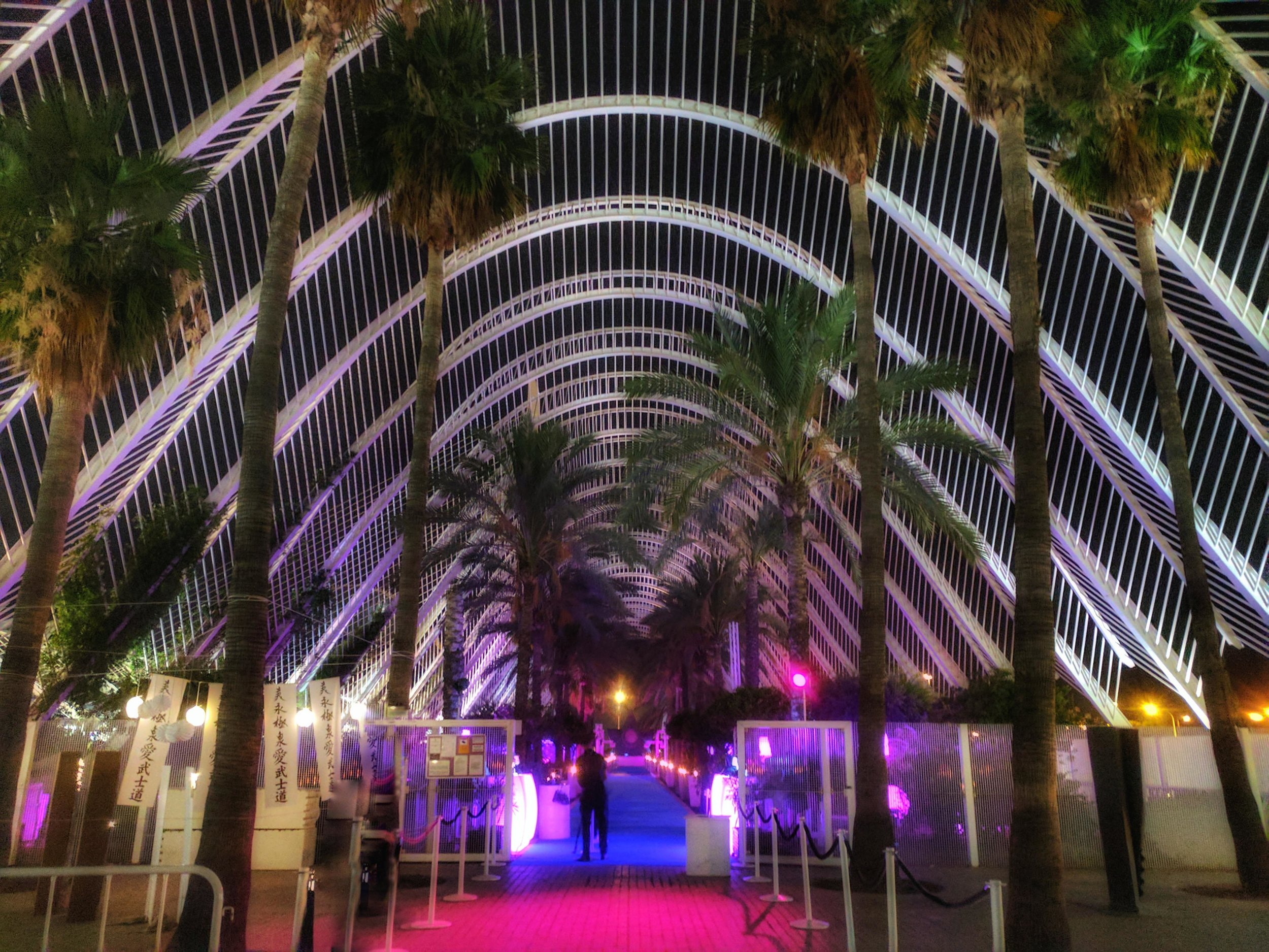 Night Time at the City of Arts of Sciences
