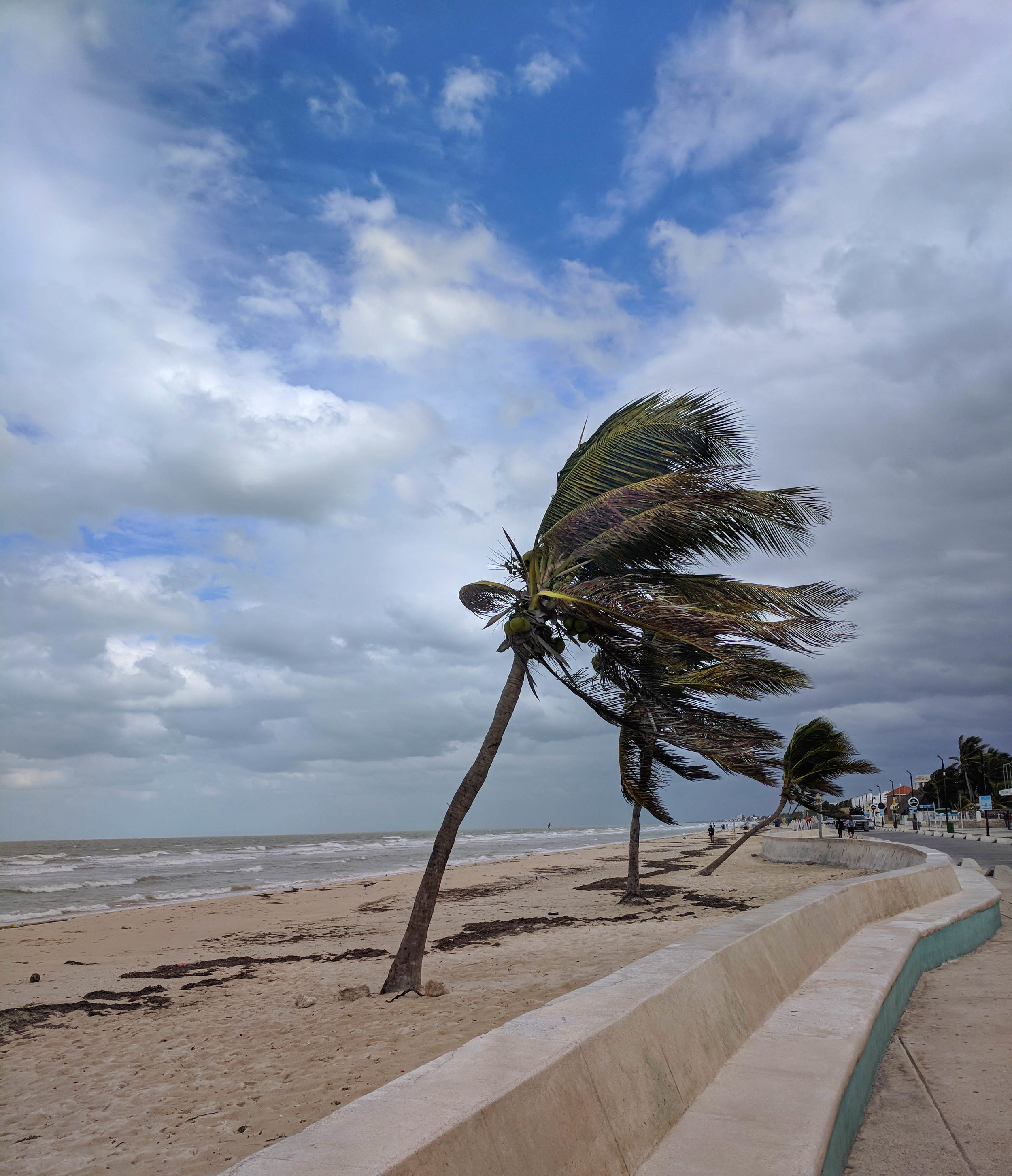 Windy Progresso.jpg