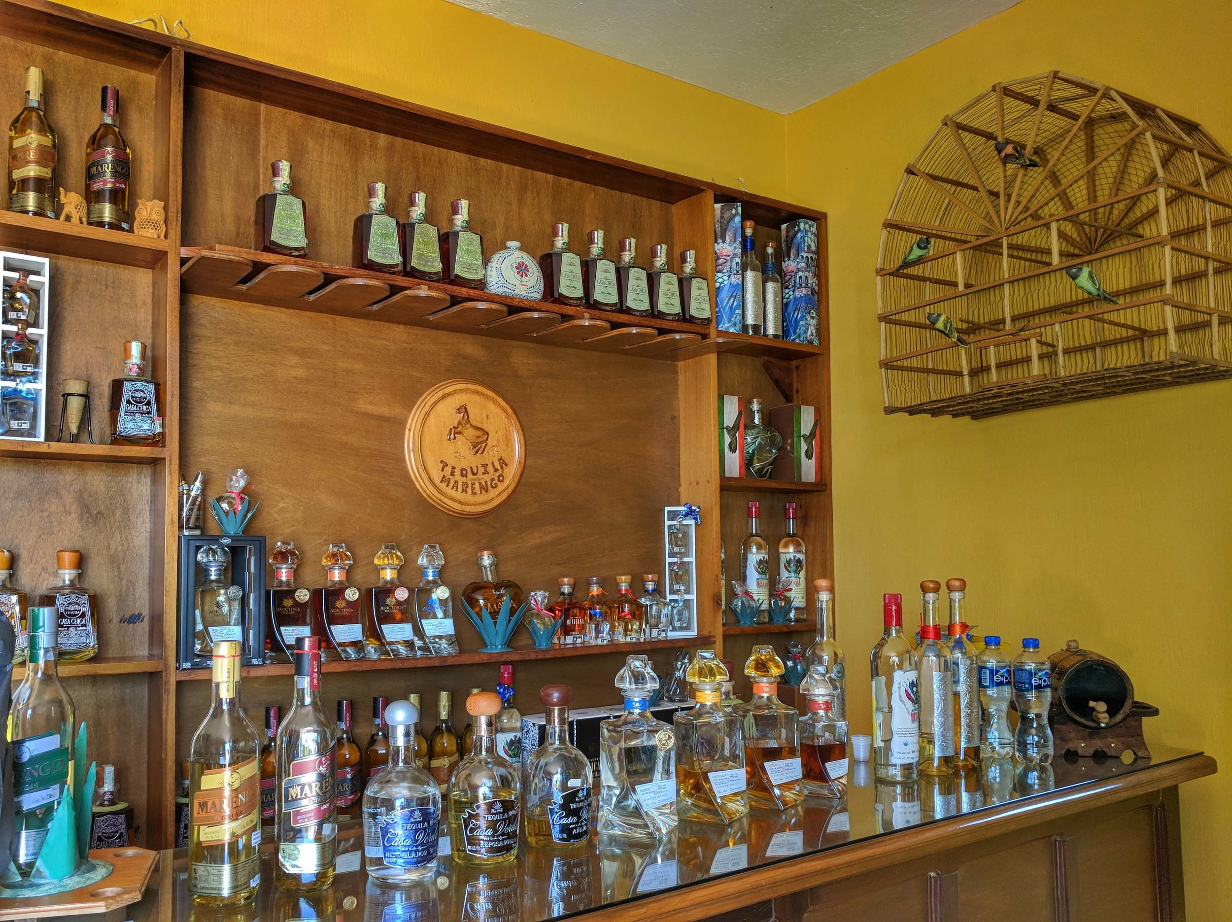 Delicious tequila to try at Casa Marengo