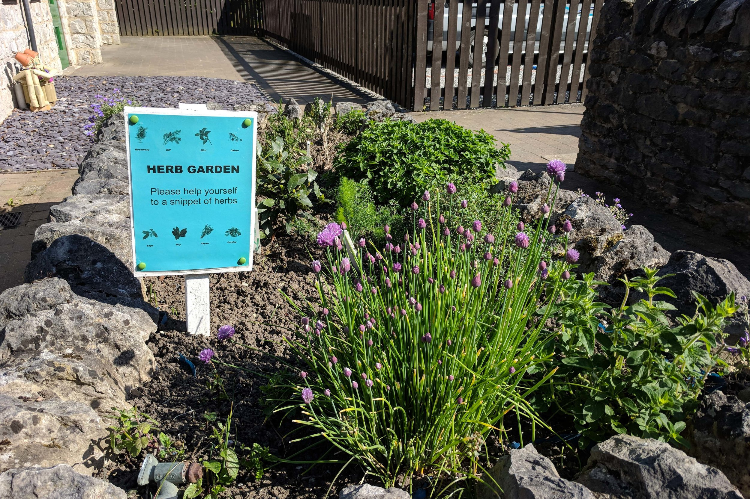 Herb garden on site