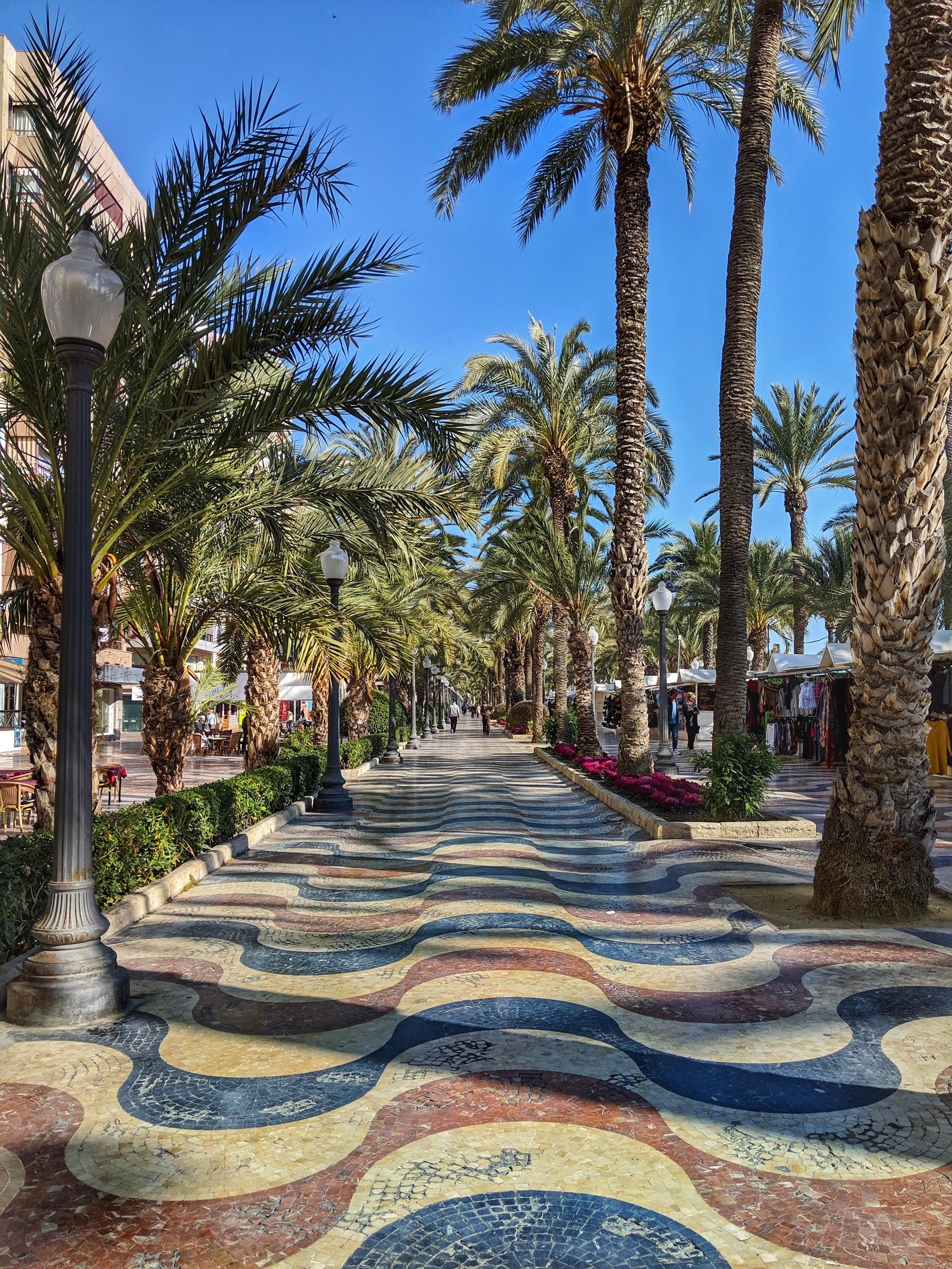Pretty Alicante