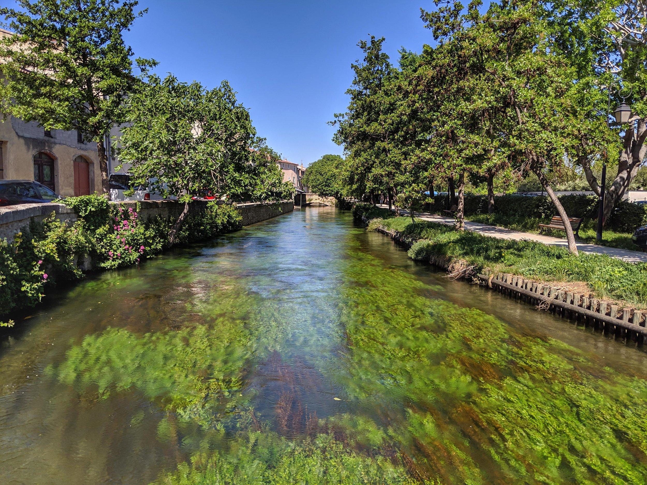 L'Isle-sur-la-Sorgue surrounded by lush green river!