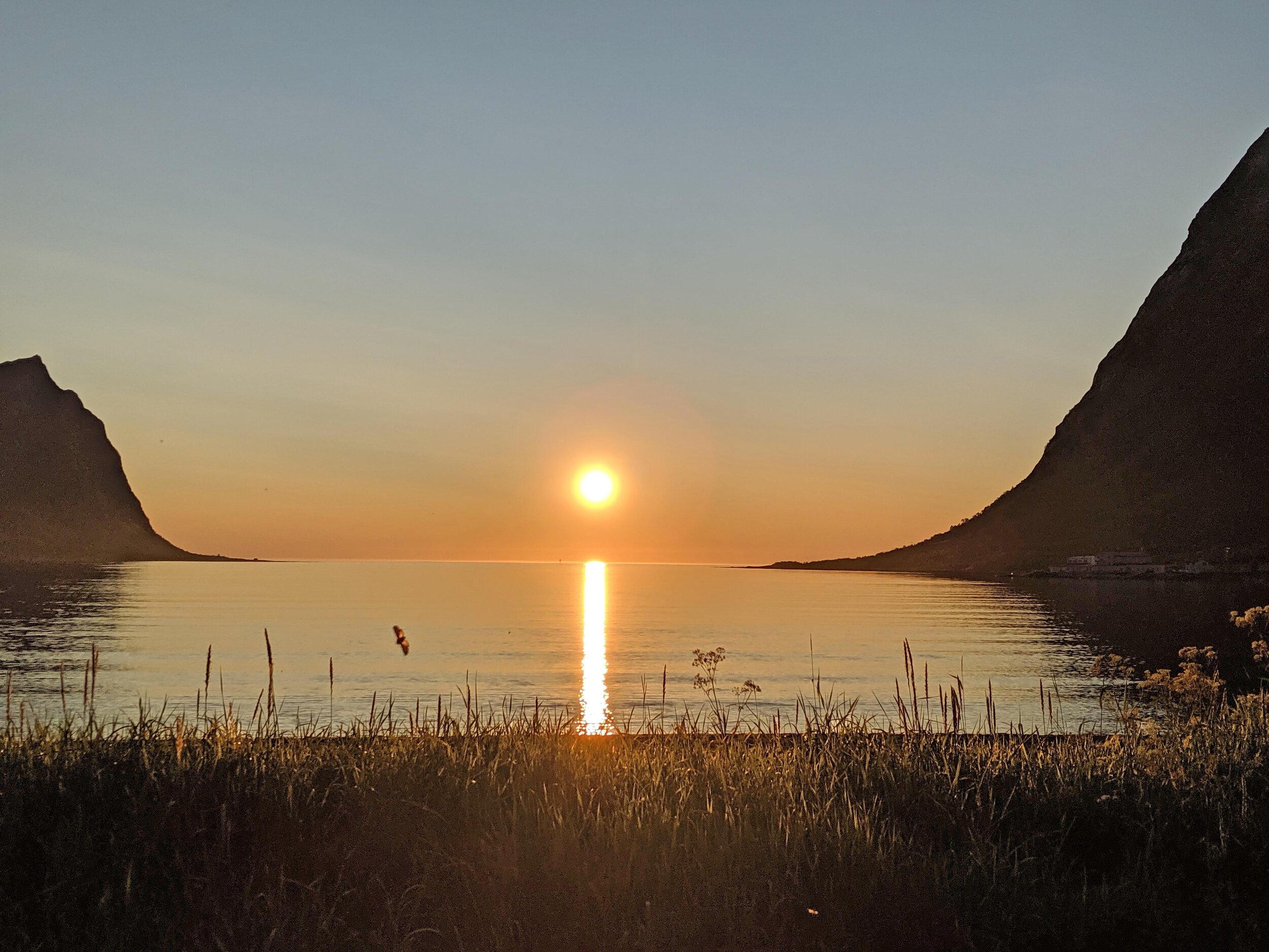 A perfect view of the midnight sun