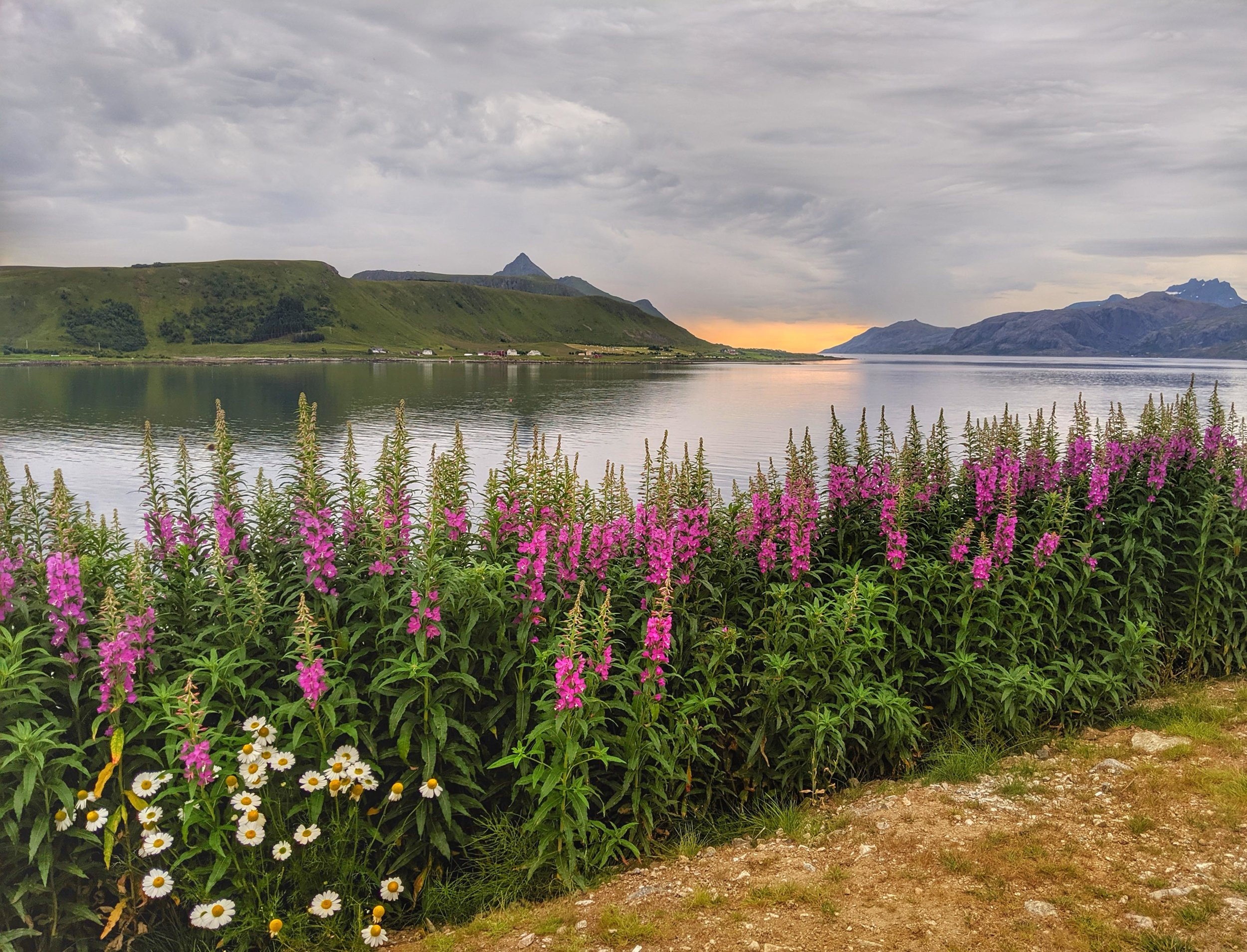 The end of another Lofoten day