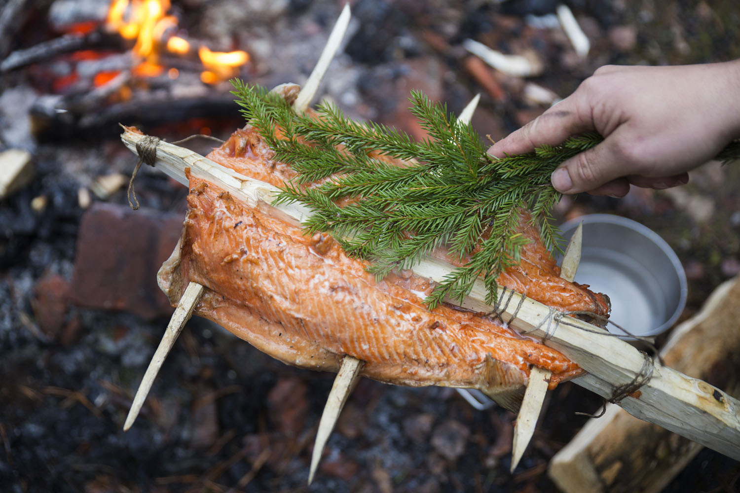 how to cook salmon over an open fire