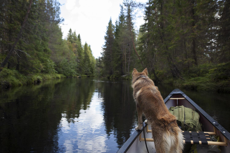 turistikohde pohjois-karjala