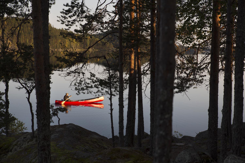 Survival finland