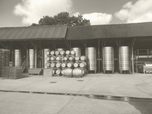 winery_yard.jpg