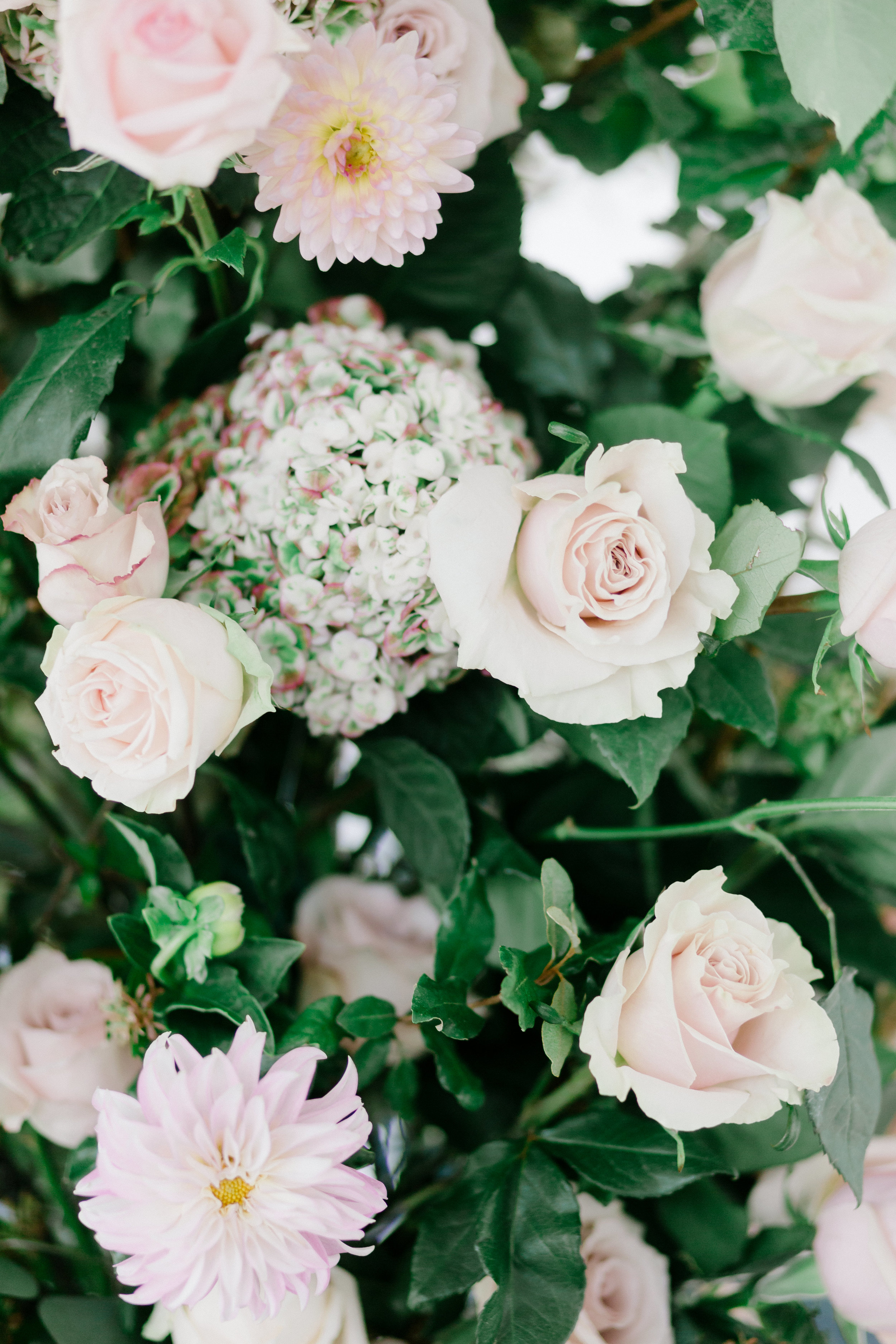 07_29_17_Wedding_0380.jpg