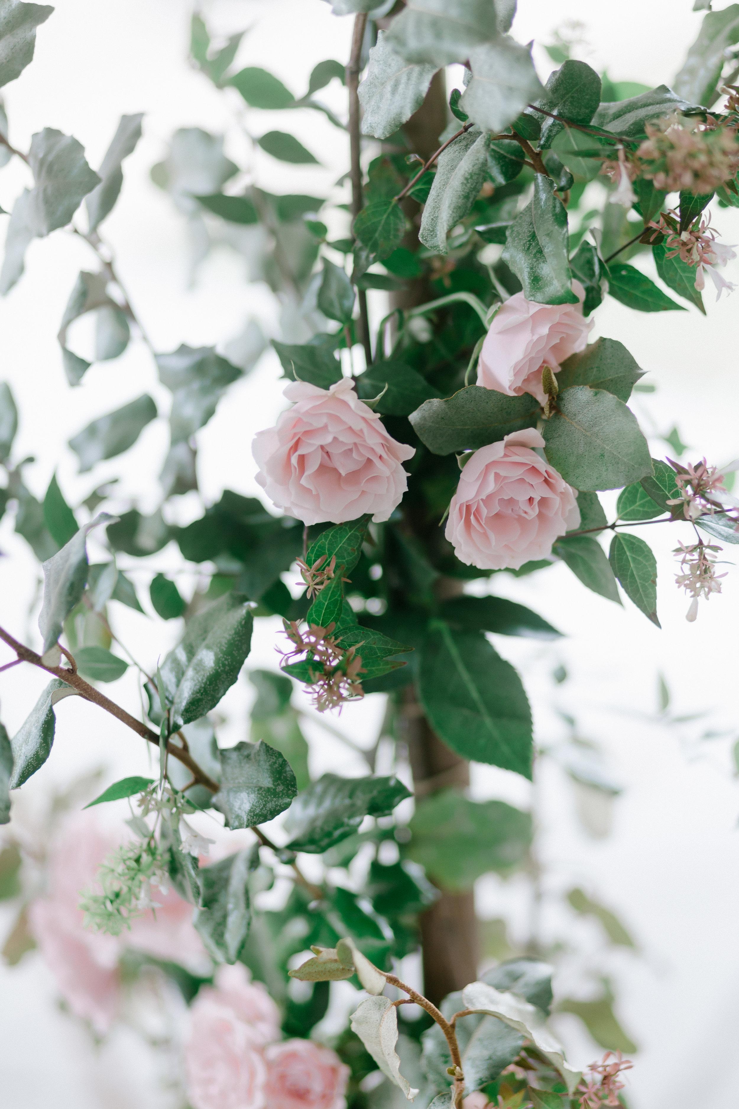 07_29_17_Wedding_0381.jpg