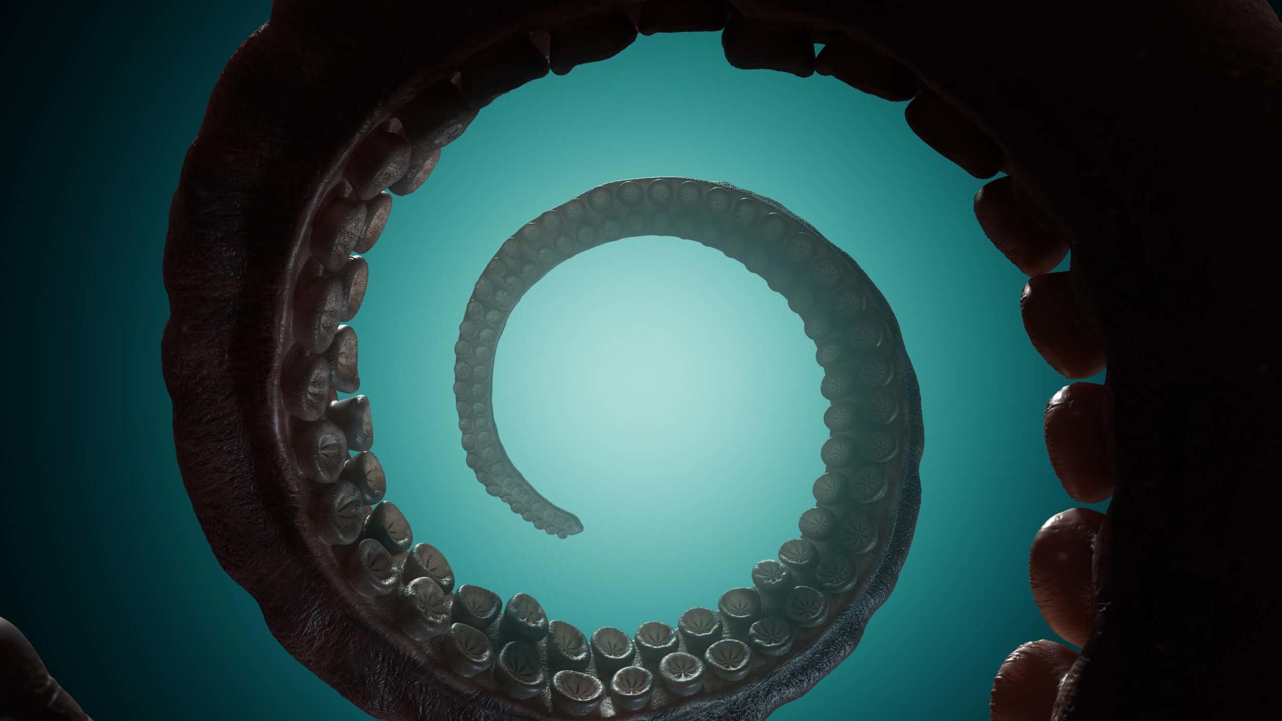 TentacleSpiral2.jpg