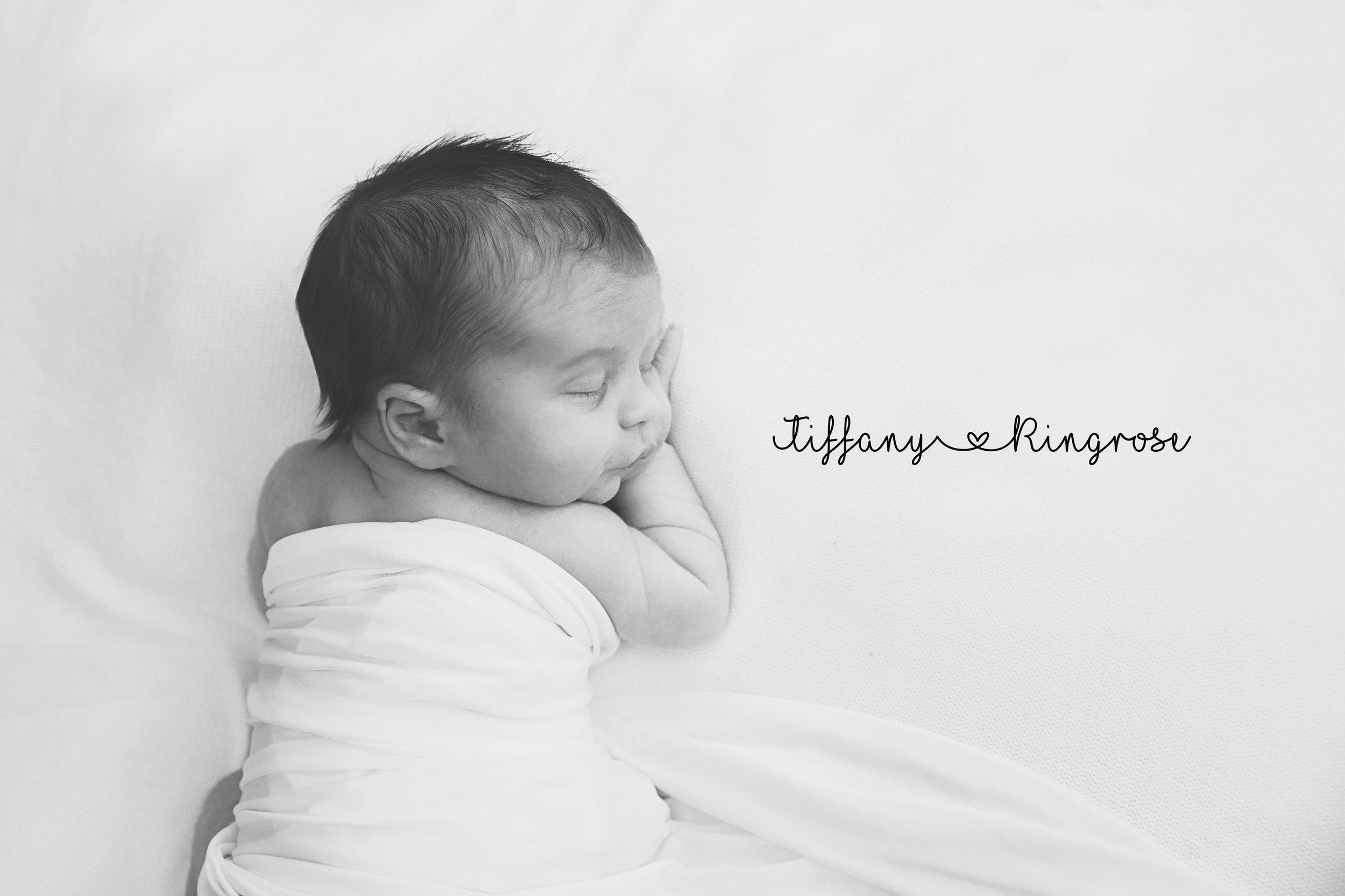 Plymouth MI Newborn Photographer