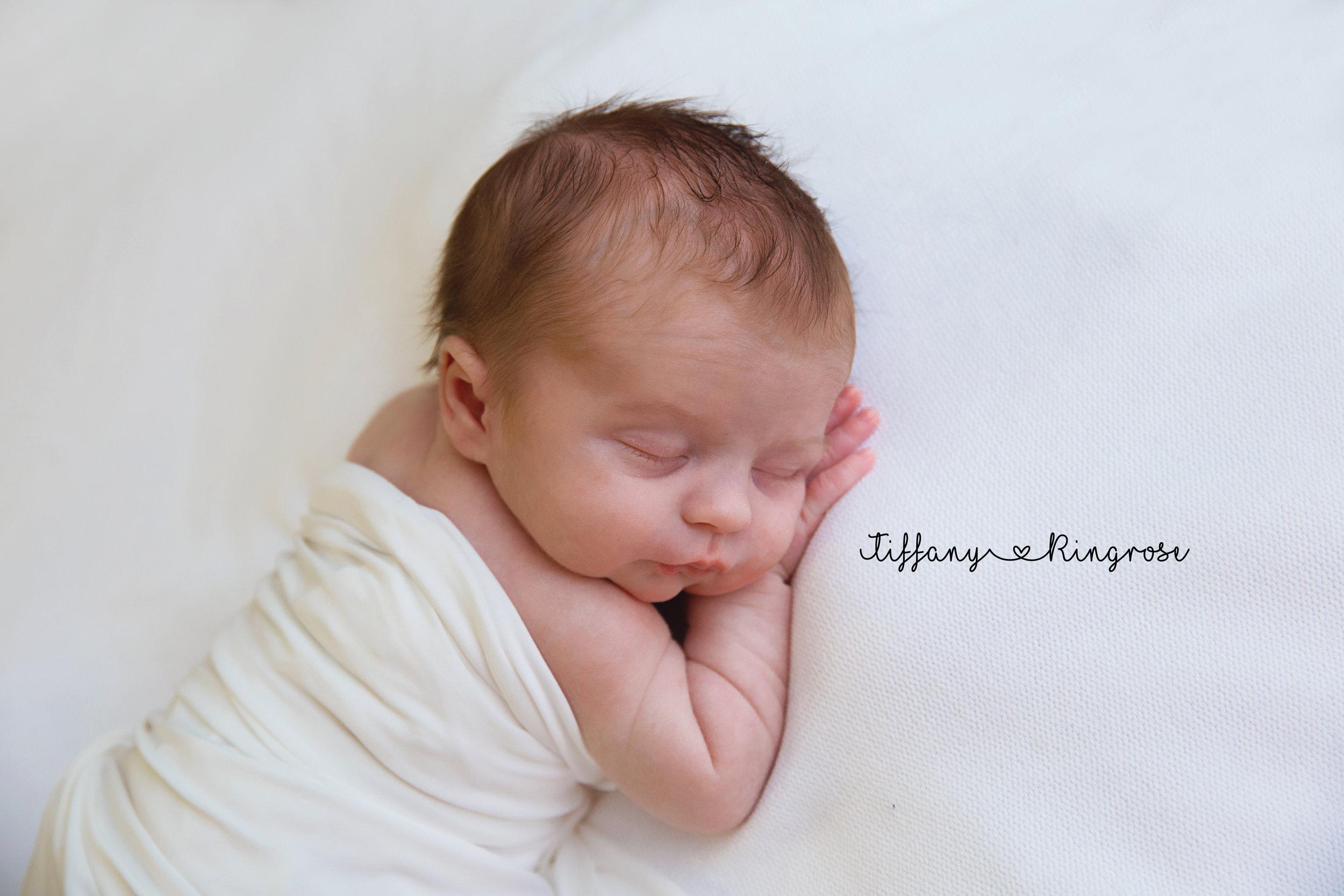 Livonia Newborn Photographer