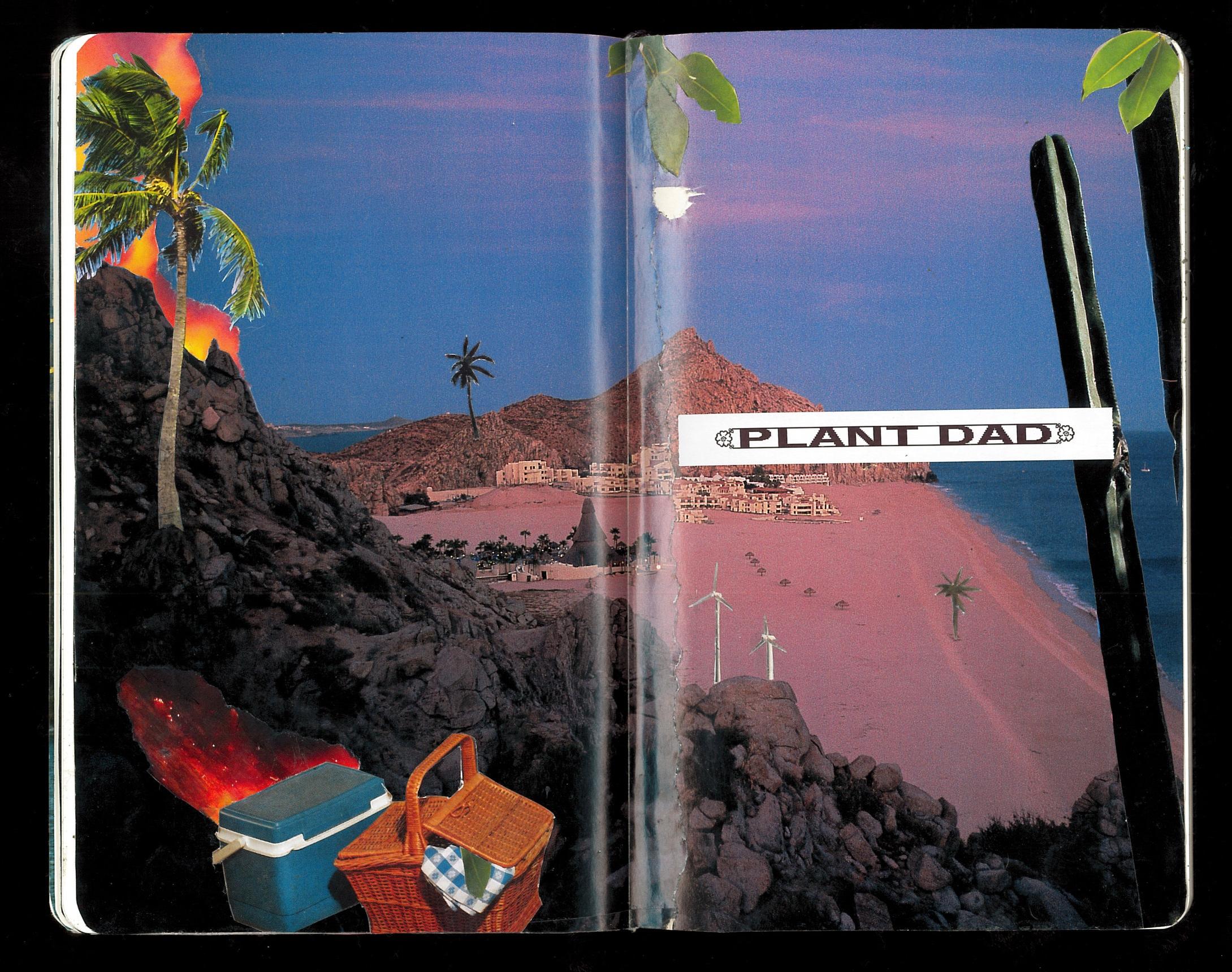 Plant+Dad1.jpg