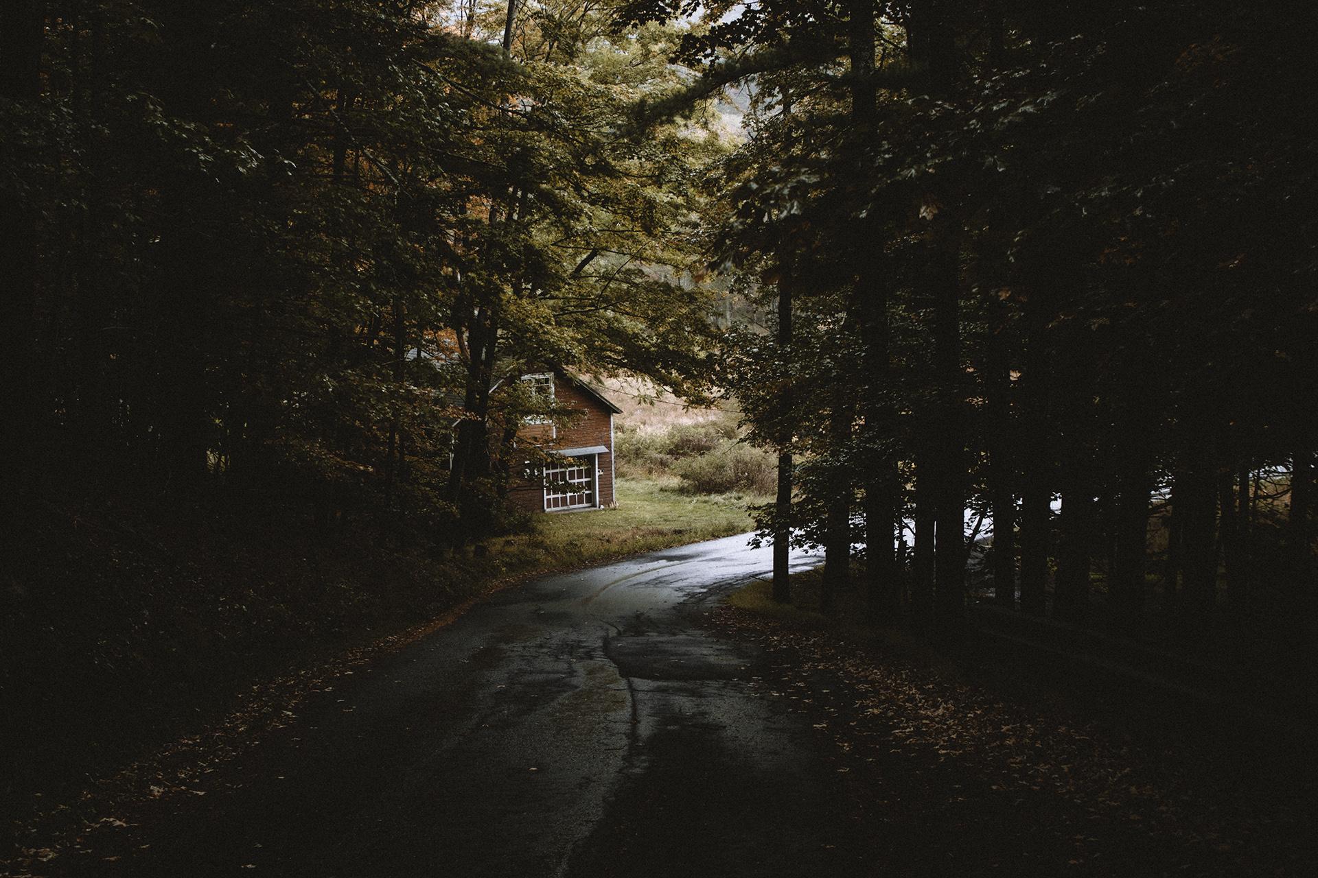 woodstockfall-16 copy.jpg