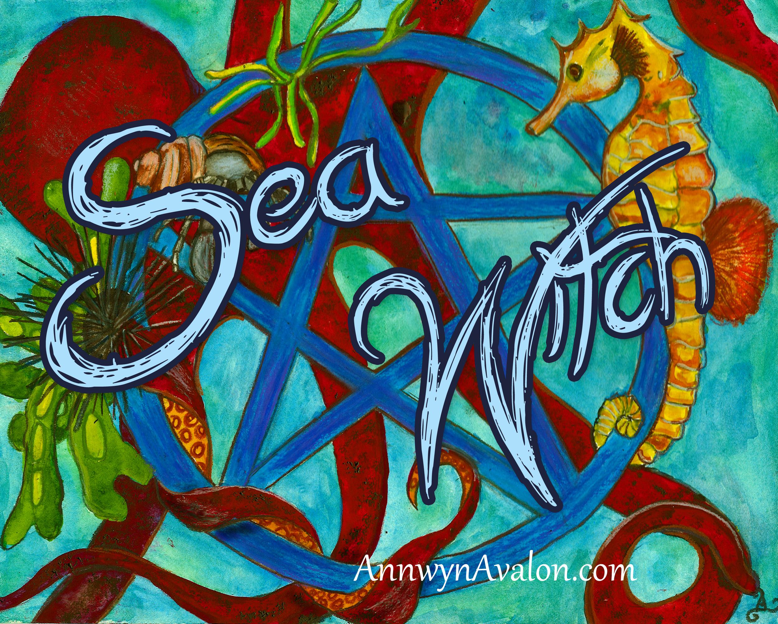 sea witch 1.jpg