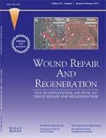 Sullivan top plastic surgeon diabetic wound repair