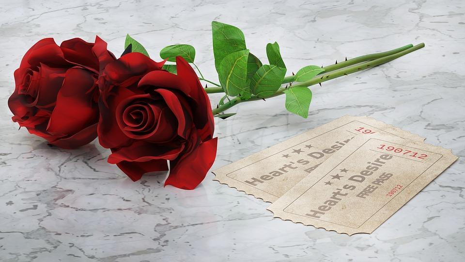 red-roses-2442147_960_720.jpg